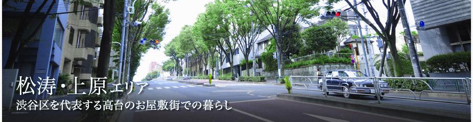 渋谷区を代表する高台のお屋敷街での暮らし